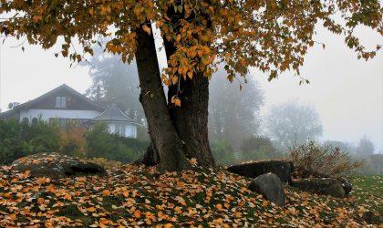 5 casas inspiradoras para disfrutar de este otoño